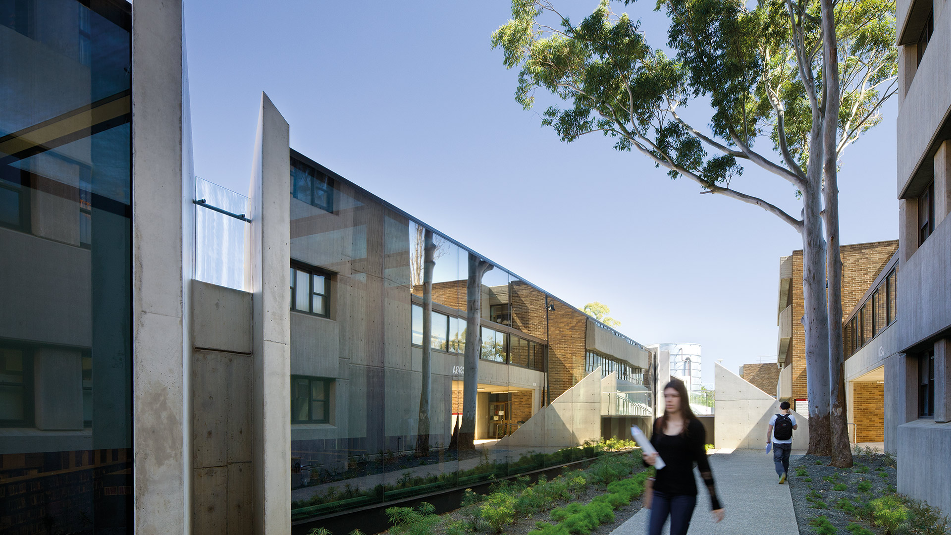 landscape architecture campus fjmt macquarie university