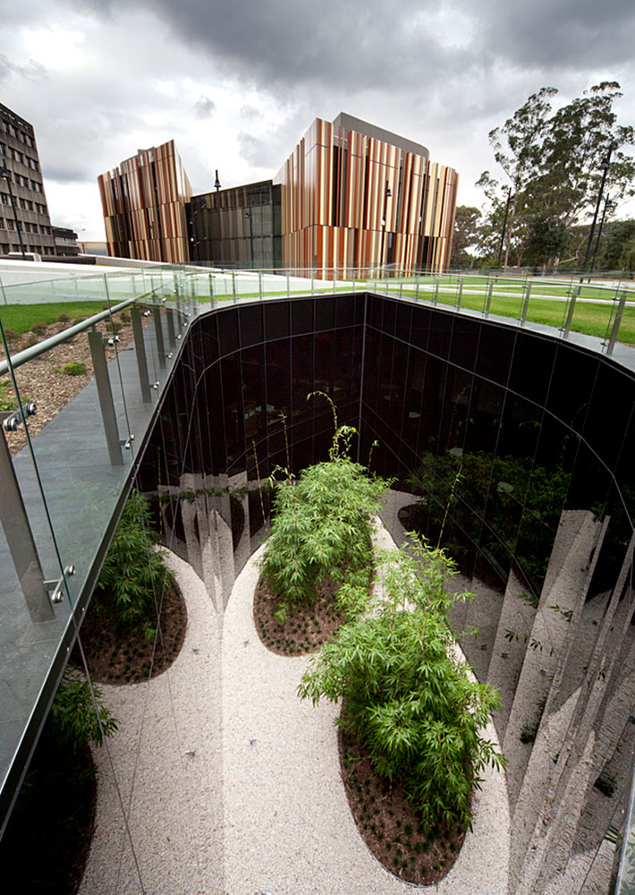 Macquarie Library Landscape design
